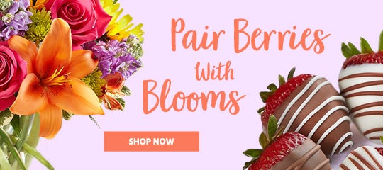 Berries & Blooms